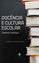 Docência e cultura escolar