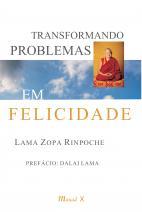 Transformando problemas em felicidade